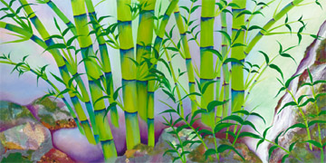 bamboo by jos